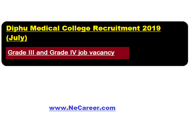 Diphu Medical College Recruitment 2019 (July)