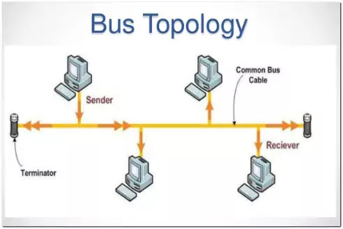 the illustration of Bus Network Topology