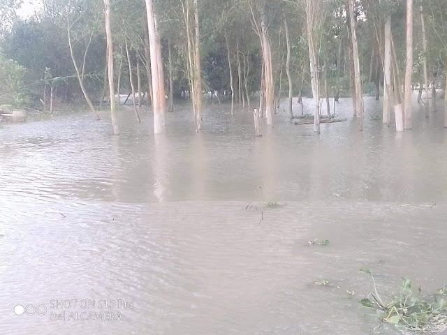 সিরাজগঞ্জে যমুনার পানি ১৬ সেন্টিমিটার   বিপদসীমার উপর দিয়ে প্রবাহিত  হচ্ছে