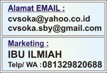 Email & Marketing