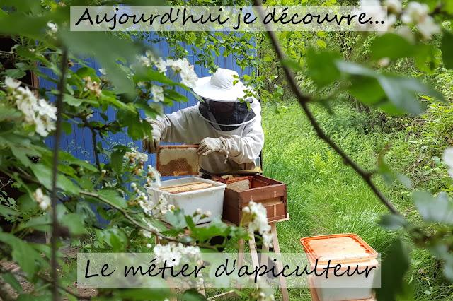 apiculture naturelle et raisonné