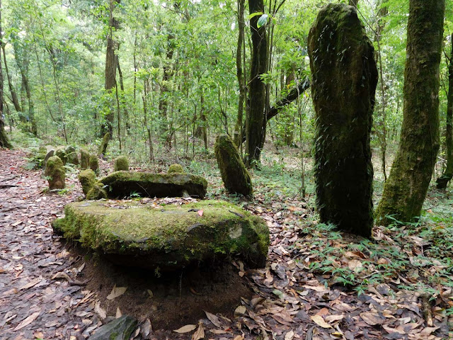Moss covered monoliths inside the Mawphlang Sacred Forest, Meghalaya