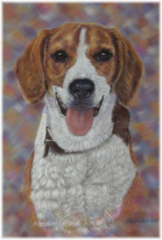 Pet portraits, paited pet portrait, dog painting in pastel