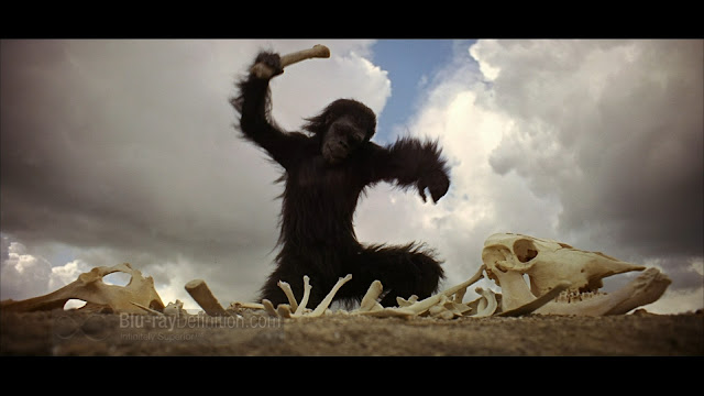 2001 going ape