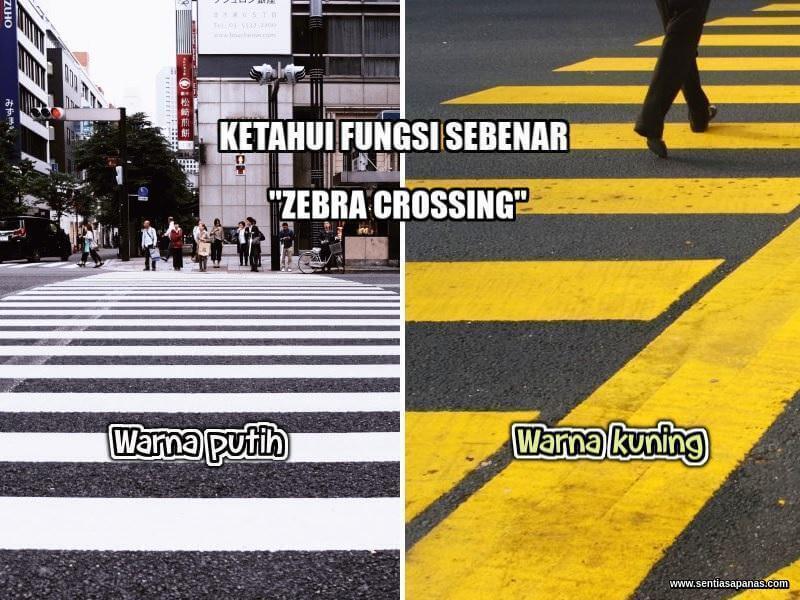 Fungsi Zebra Crossing