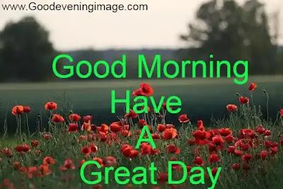 good morning wallpaper flower