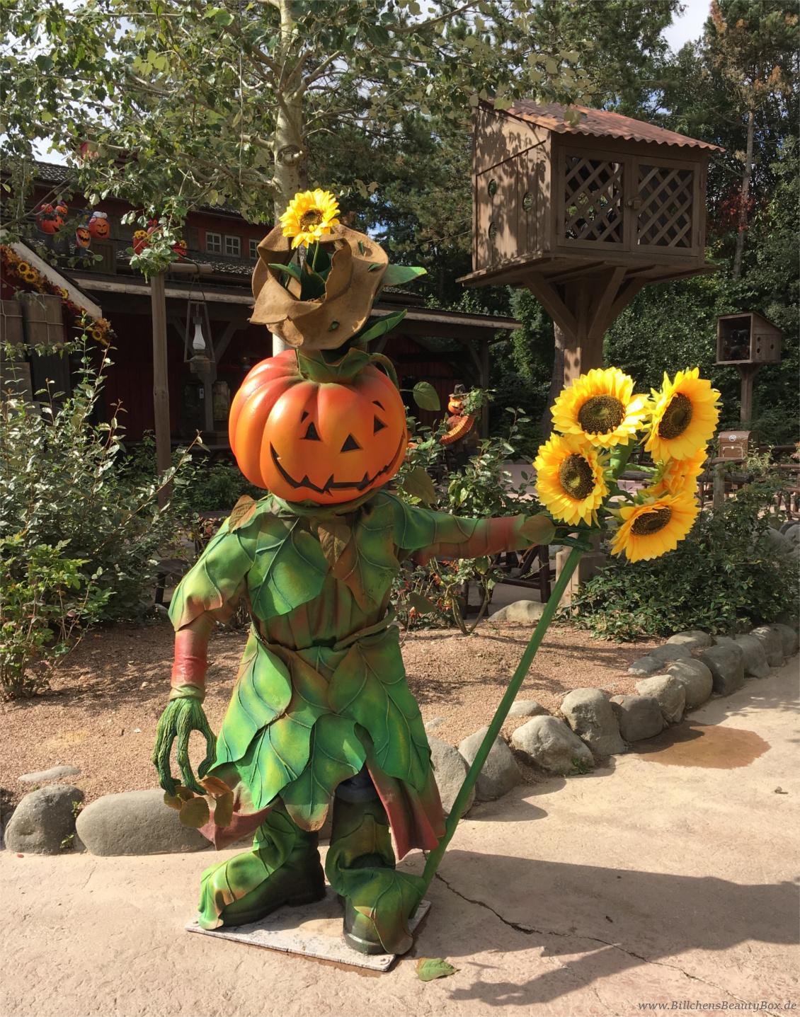 Disneyland Paris - Frontierland Halloween Dekoration Kürbisse