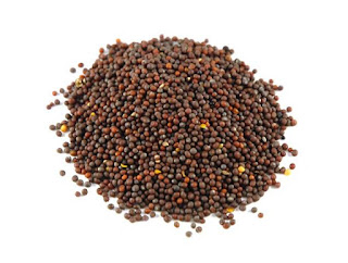 Mustard seed features get support at 3950 rupees