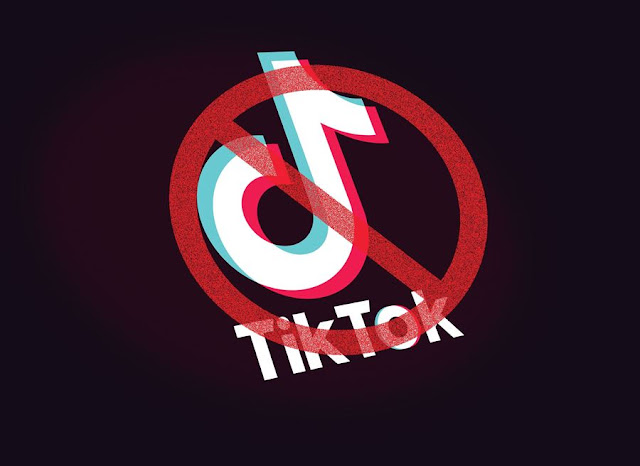 Which Countries Have Banned TikTok