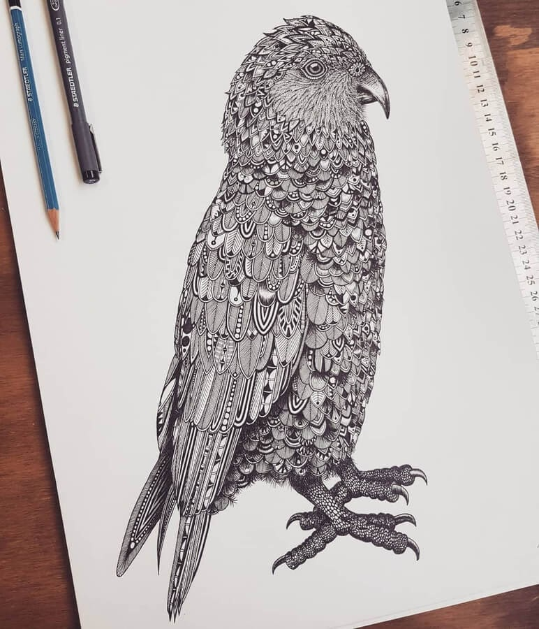 04-Zentangle-parrot-Tobias-www-designstack-co