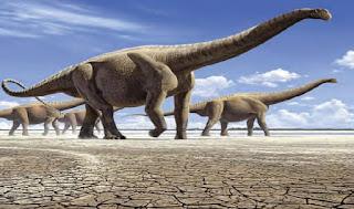 Pembagian 4 Zaman Berdasarkan Geologis