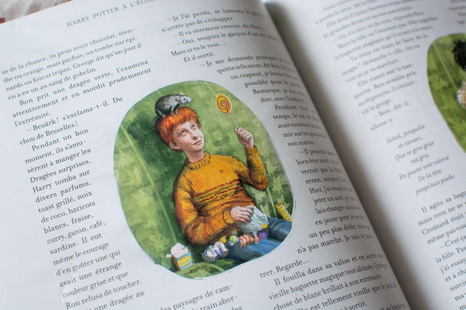 harry-potter-version-illustrée