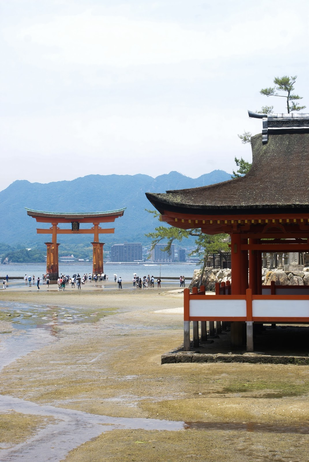 miyajima itsukushima shrine torii sanctuaire japan