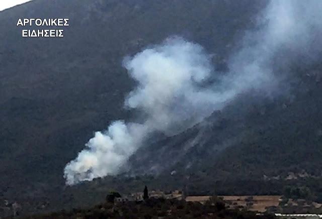 Υπό έλεγχο η πυρκαγιά στην Τροιζηνία