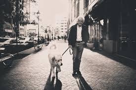 बुढा आदमी और कुत्ता | real life inspirational story in hindi | hindi kahani