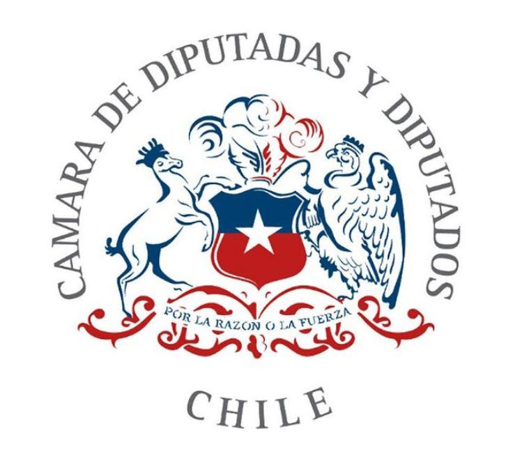 Diputadas y diputados: el remozado logo de la Cámara Baja