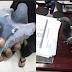 Pomba é presa após transportar drogas em uma mochila