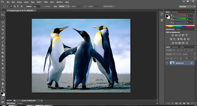 Adobe Photoshop CS6 Extended 13.1.2 Full Patch