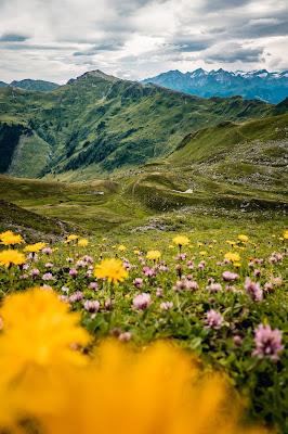 Schusterkogel  Bergwanderung Saalbach  Talschluss Hinterglemm  Wanderung-Saalbach  Wandern-Saalbach SalzburgerLand 12
