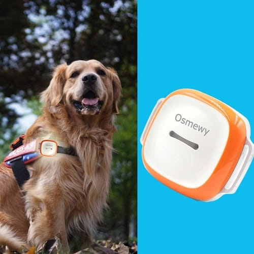 Review Osmewy Pet Cat Dog GPS Tracker