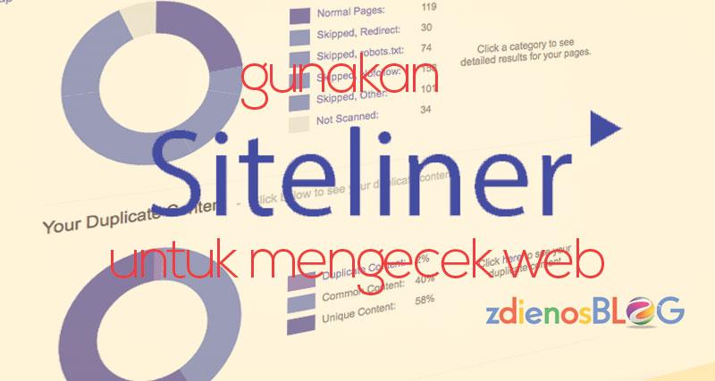 Gunakan Siteliner untuk Cek Website Kamu