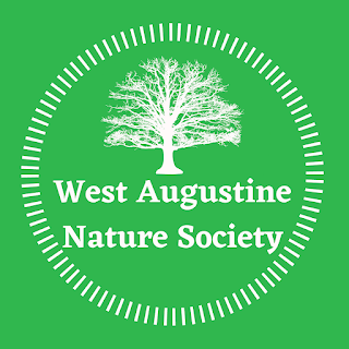 West Augustine Nature Society logo