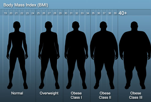 average body fat percentage models