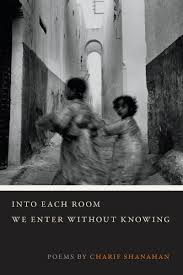 https://www.goodreads.com/book/show/30315844-into-each-room-we-enter-without-knowing?ac=1&from_search=true