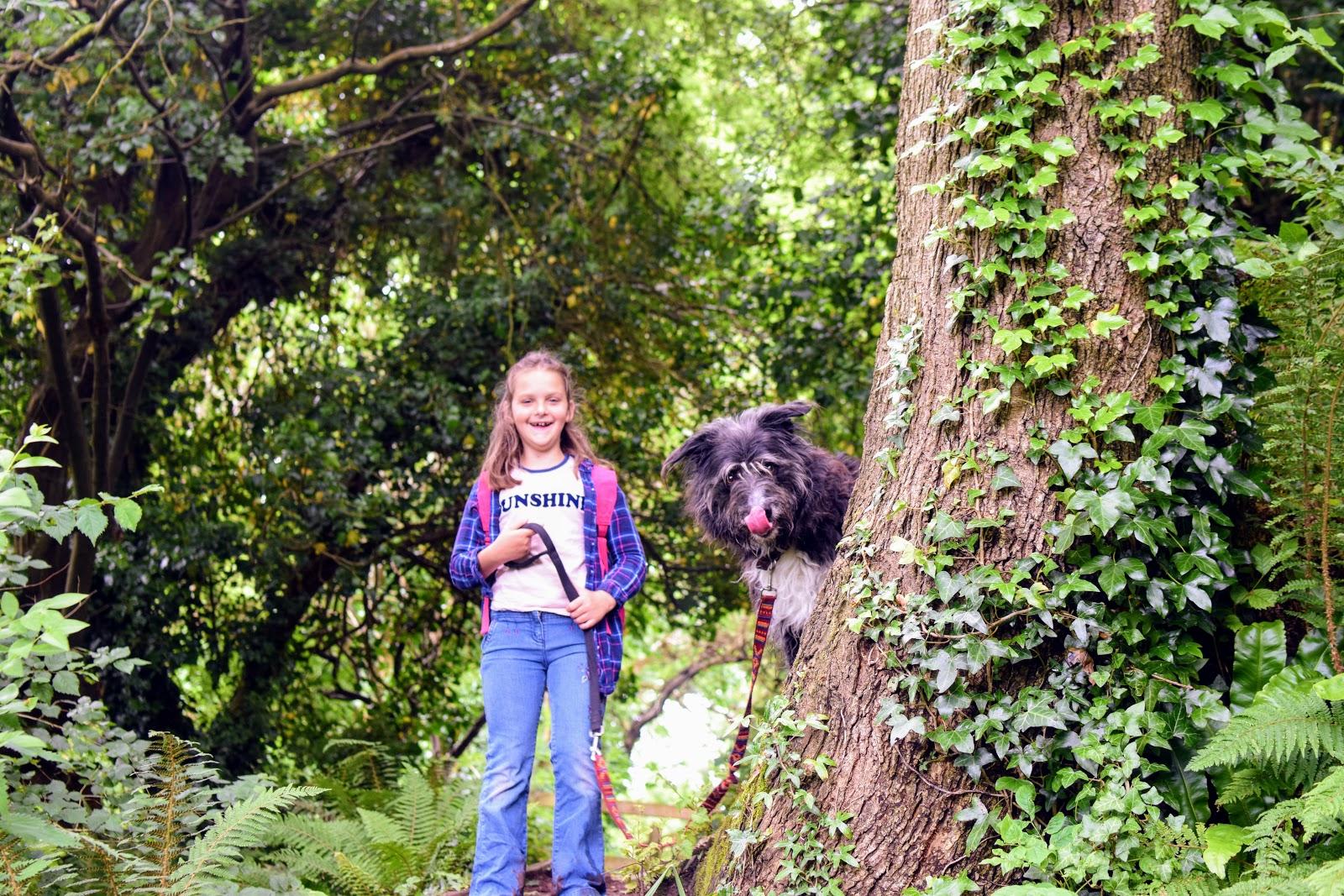 , Dog Danger:  Keeping Your Dog Safe in the Garden