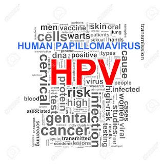 papillomavirus-www.healthnote25.com