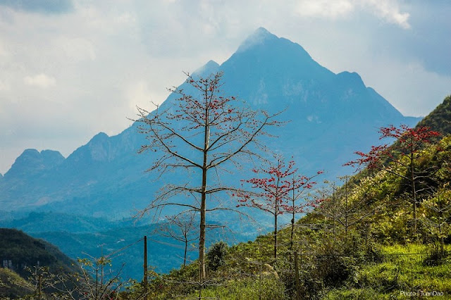 Photos made everyone want to go to Ha Giang in March