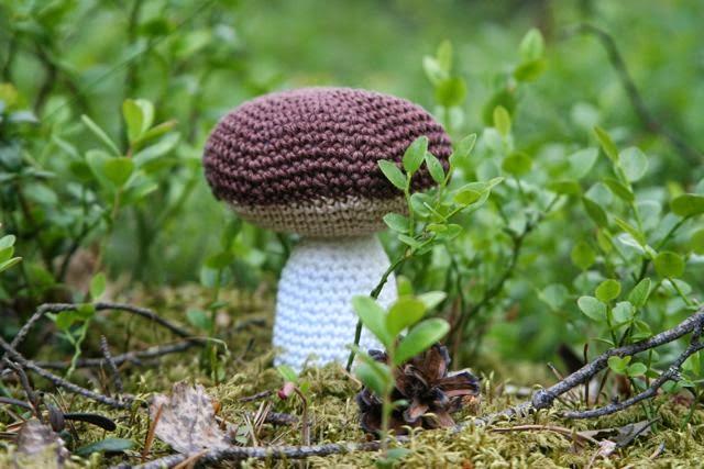Sienen Osat
