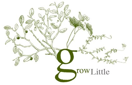 grow little