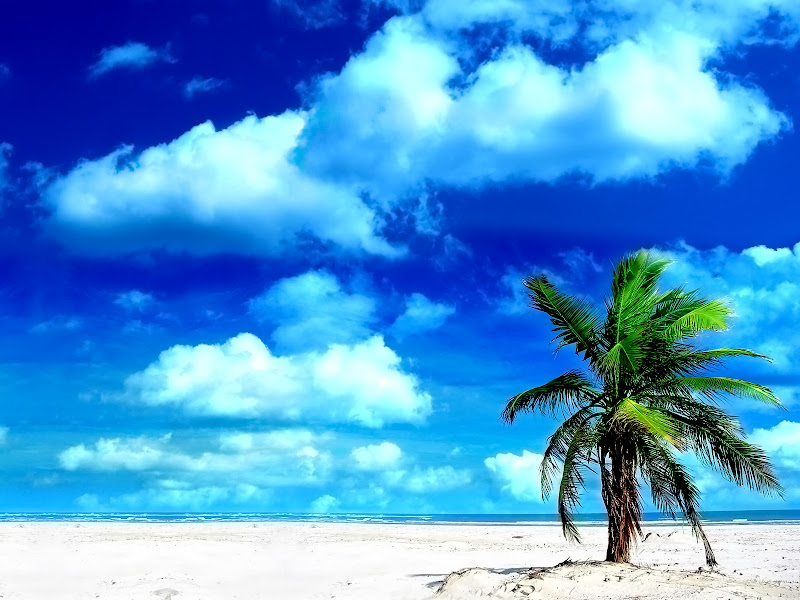 Zomer strand Wallpapers title=