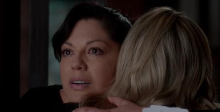Grey's Anatomy - Family Affair - Review