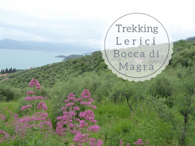 Trekking nel Parco di Montemarcello: panorama sul golfo dei poeti