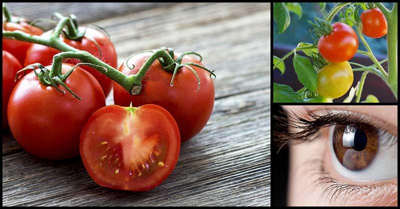 Tomatoes For Good Eyesight