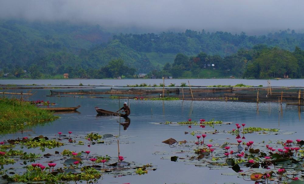 Morning in Lake Sebu