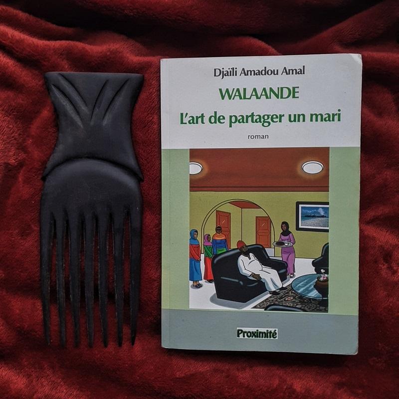 Blog Afro - Littérature Afro : Walaande L'art de partager un mari de Djaïli Amadou Amal