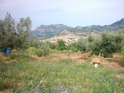los olivares ,camino ,pantano de Pena, Beceite, Beseit, vista al pueblo