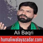 https://www.humaliwalayazadar.com/2019/10/ali-baqri-nohay-2020.html