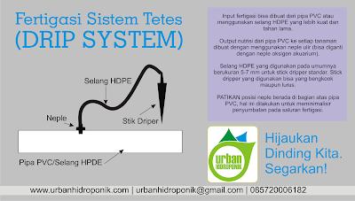 hidroponik sistem tetes