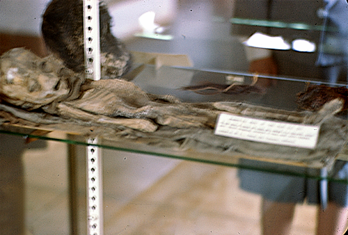 Child Mummy From Montezuma Castle (S.L. Palmer Collection)