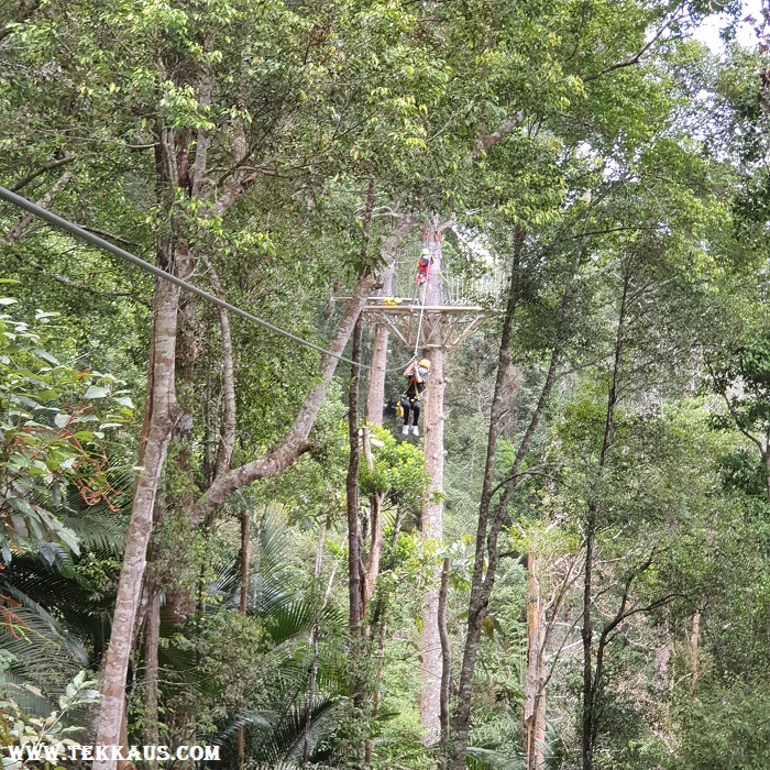 Penang Best Thing To Do For Kids Zipline