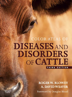 Color Atlas of Diseases and Disorders of Cattle 3rd Edition