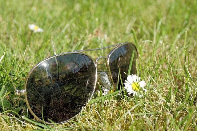 kaca mata di rumput