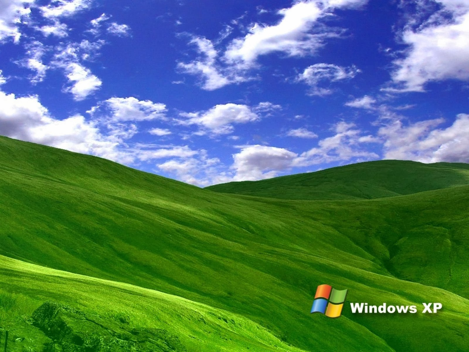 art pictures: Grass Windows XP Wallpapers