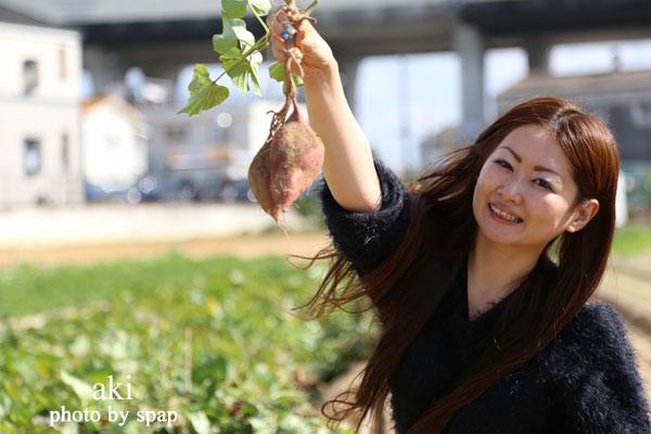 いも掘り体験! きくちゃんの野菜畑<堺市中区>