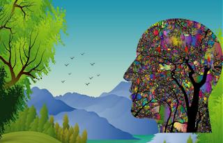 Observación de aves, un beneficio para la salud mental