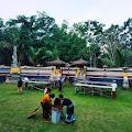 Pembangunan Pure Ped Batu Medau Desa Jiwa Baru Lubai, Butuh Perhatian Pemkab Muara Enim